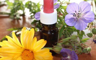 Médecine naturelle : avantages et inconvénients.